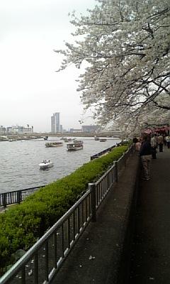 春爛漫隅田川Ⅰ